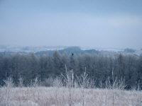 panorama_wdol2.jpg