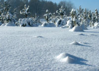 snieg_101