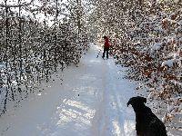 Zima - Szlak ze Żródła Marii do Osowy