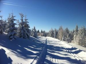 Jagodna Góry Bystrzyckie