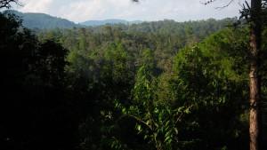 Panorama na odległe szczyty