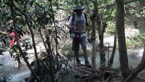 Bambukładka przez strumyk