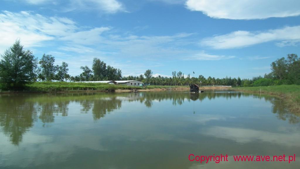 Wody Pakarang to idealna enklawa dla ptaków