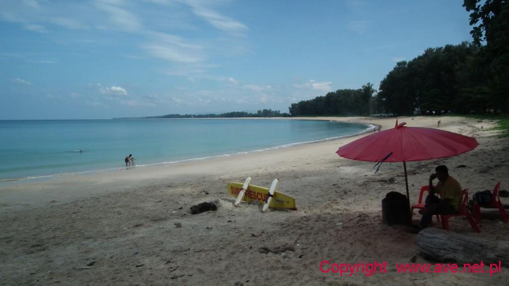 Plaża w parku, ratownik